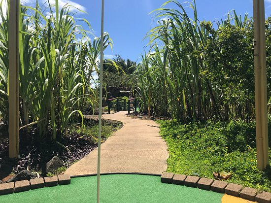 another hole - Picture of Kauai Mini Golf & Botanical Gardens ...