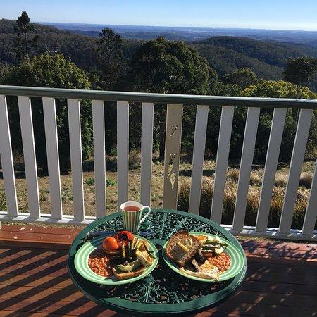 Bunya Mountains, Australia: photo4.jpg