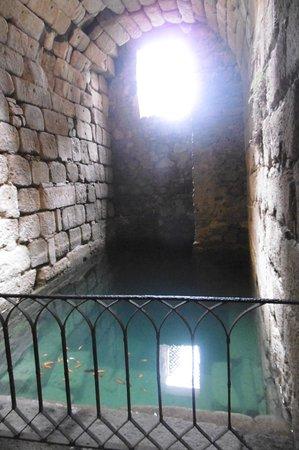Alcazaba照片