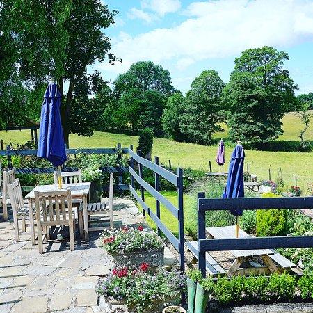 Bay Horse, UK: Back garden