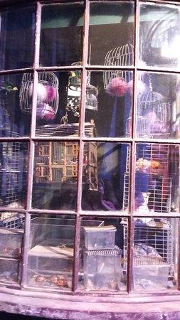 Warner Bros. Studio Tour London - The Making of Harry Potter: Winkelgasse