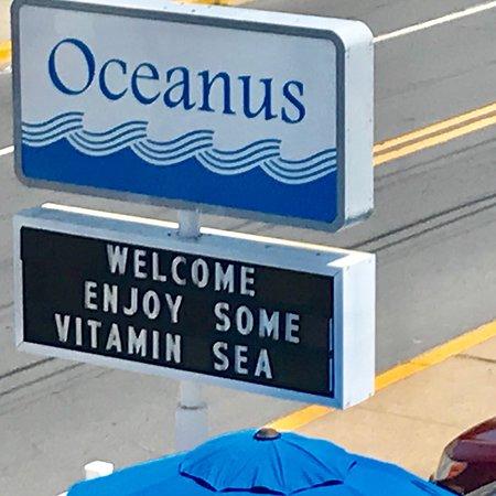 The Oceanus 이미지