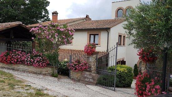 Montecastrilli, Italia: IMG-20180711-WA0012_large.jpg