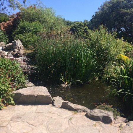 Southsea Rock Gardens Portsmouth Aktuelle 2020 Lohnt Es Sich