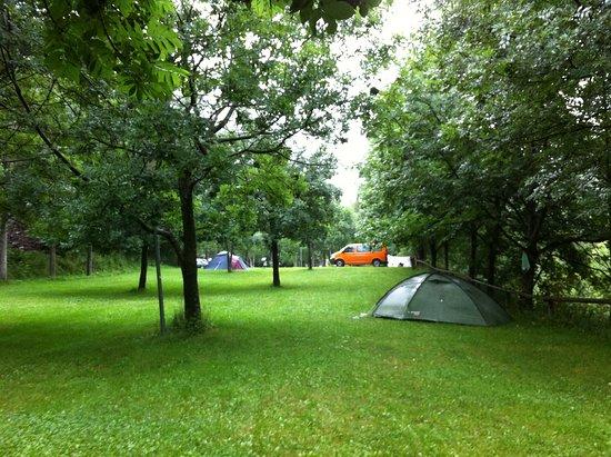 Tavascan, Spain: Zona de Camping