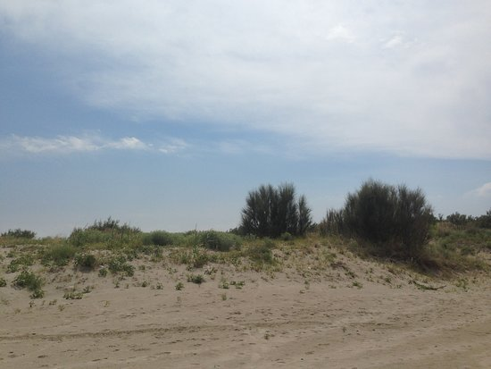 Bagni Amarea Beach Foto