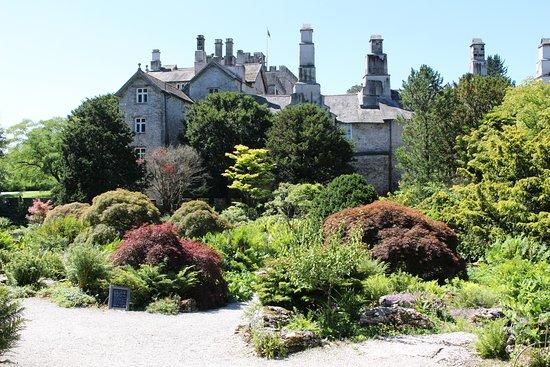 Sizergh Castle: Sizergh: Acers