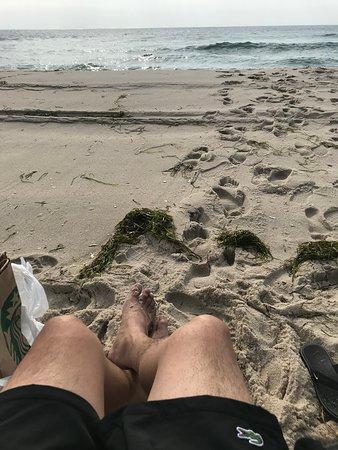 Island Beach State Park: Summer 2018