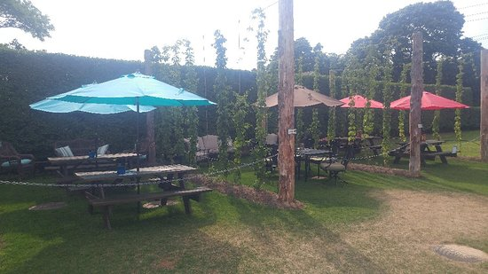 Jamesport Farm Brewery: Great reserved seating areas for larger groups