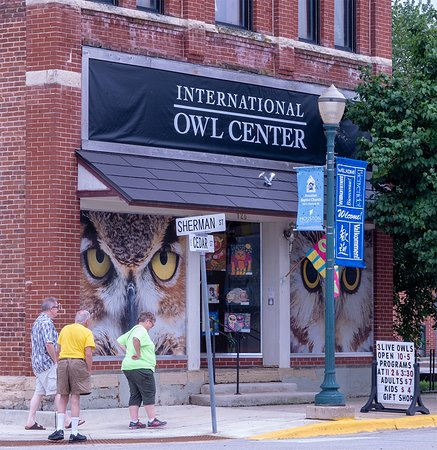 The Storefront Center In Downtown Houston Mn Picture Of International Owl Center Houston Tripadvisor