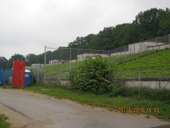 Reichsparteigelande (Nazi Party Rally Grounds): The overgrown grandstands