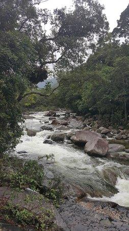 Daintree Region, Australia: The river was definitely beautiful