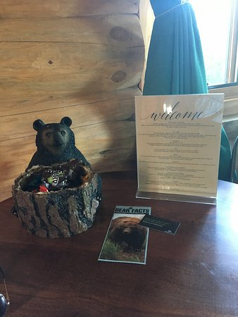 King Salmon, AK: Our welcome bear full of goodies