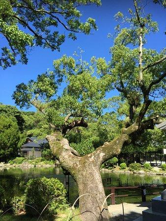 Munakata Taisha Hetsugu Shrine