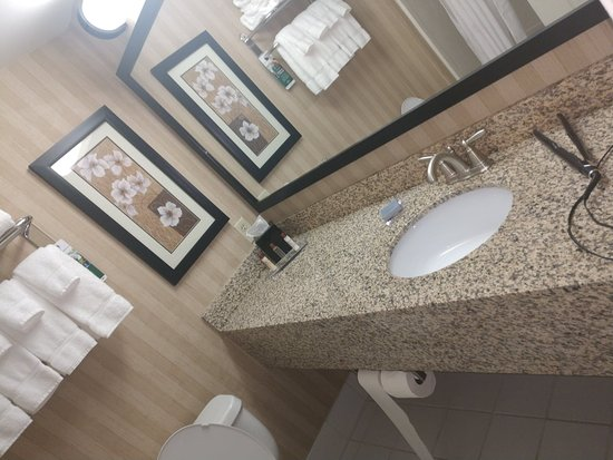 Wingate by Wyndham Greensboro: nice upgraded and updated large vanity