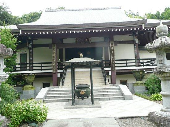 徳善寺の萩