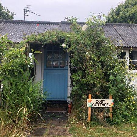 Cadgwith, UK: photo1.jpg