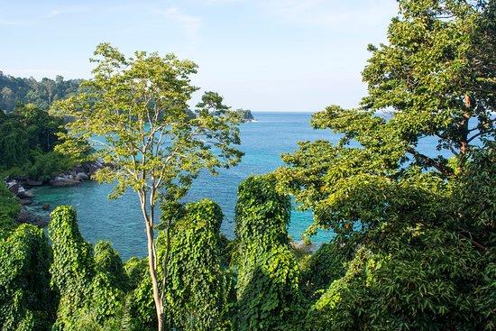 Tekek, Malaysia: View from the balcony
