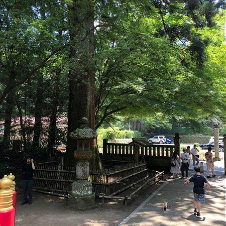 Unganji Temple: photo2.jpg