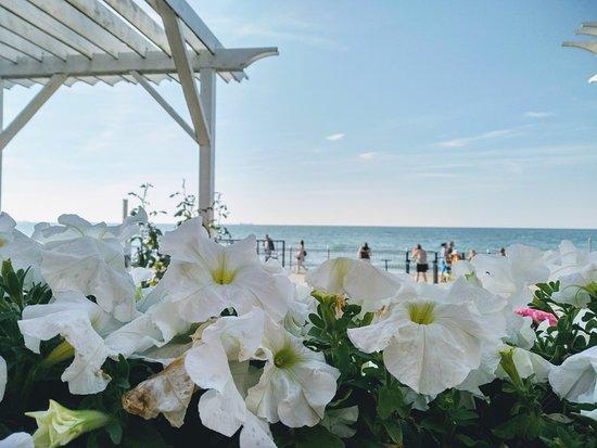 Неспешный отдых вблизи моря