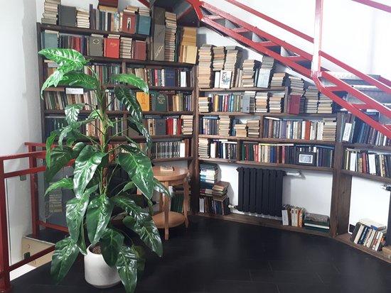 Vytegra, Rússia: библиотека
