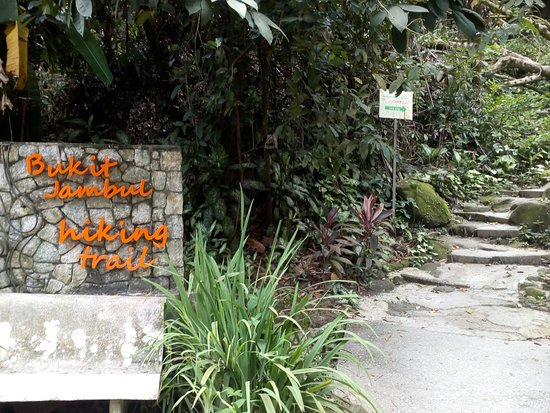 Bukit Jambul Orchid & Hibiscus Garden and Reptile House