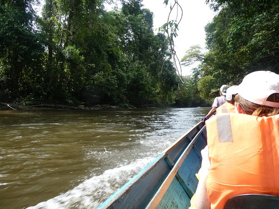 Sarawak, Malesia: Travelling by Long boat
