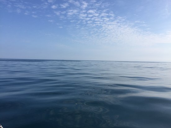 A truly calm sea - Picture of Mermaid Pleasure Trips ...