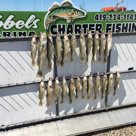 Lakeside, OH: Tibbels Marina and Charter Service