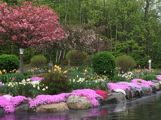 Winthrop, Maine: Spring time at The Roost