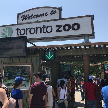 多伦多动物园照片