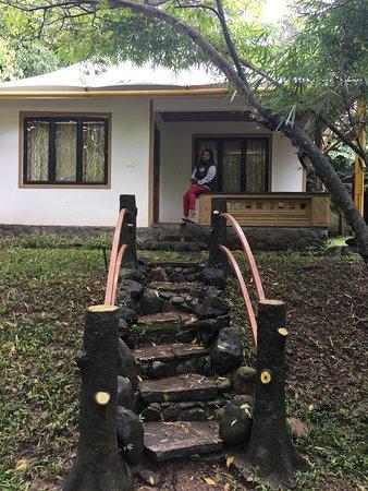 Mananthavady, الهند: Cedar camp cottage