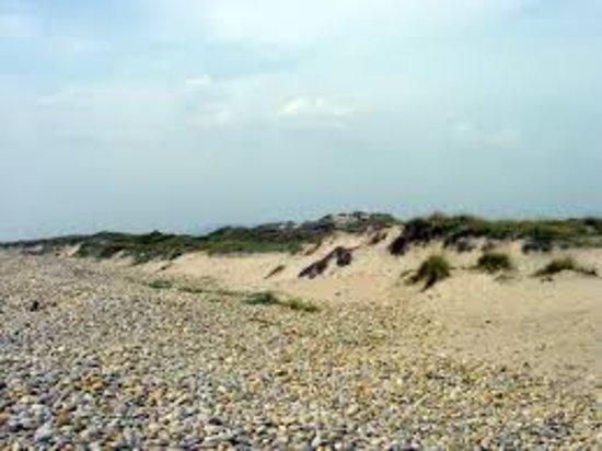 Praia de Cepaes