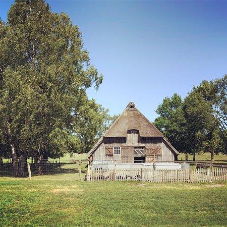 Naturpark Lueneburger Heide