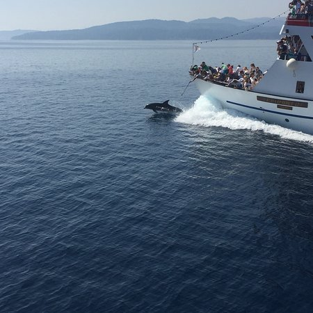 Amaliapoli, Greece: photo1.jpg