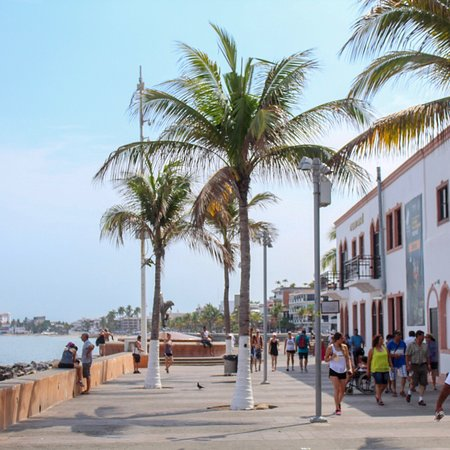 Puerto Vallarta, Mexique : photo1.jpg