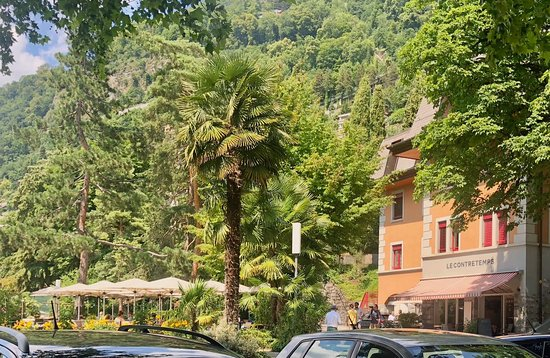 Territet, İsviçre: Palm tree on the Swiss Riviera
