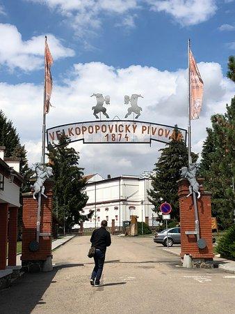 Velke Popovice Foto