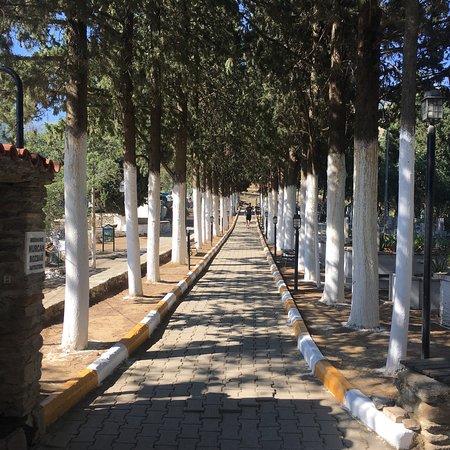 Birgi, تركيا: İmam-ı Birgivi Mehmet Efendi Türbesi