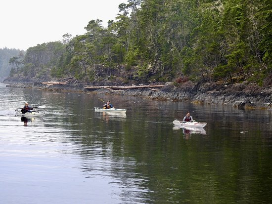 Heriot Bay, Canadá: Early morning paddle.