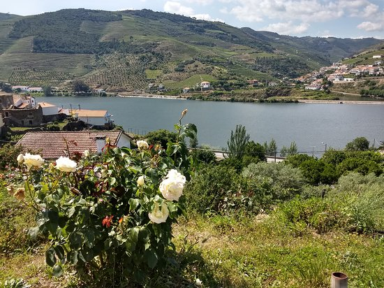 Folgosa, Portugal: View from Room