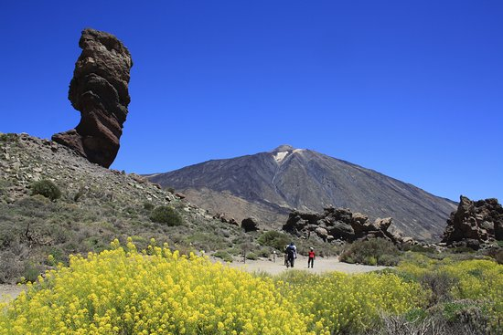 Tegueste, España: Excursion to Teide National Park - Tenerife