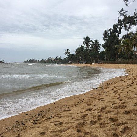 Moragolla, Sri Lanka: photo2.jpg