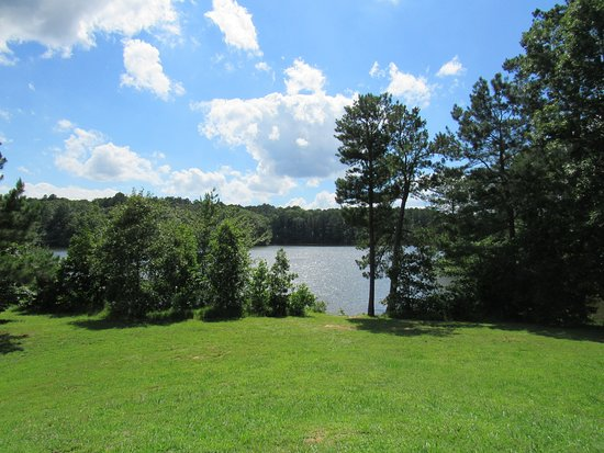 Wildersville, TN: View from our tent