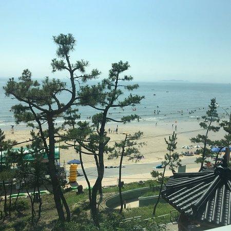 Dacheon Beach照片