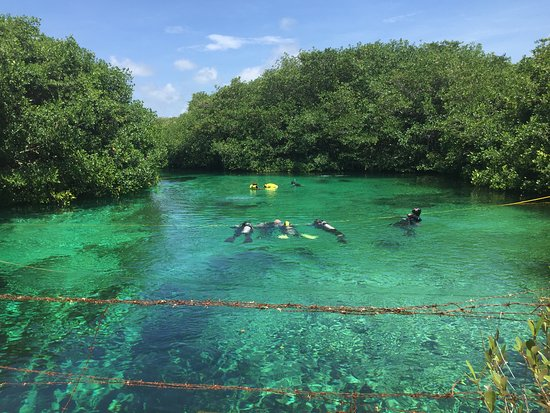 Agua Clara buceo Tulum: Casa cenote