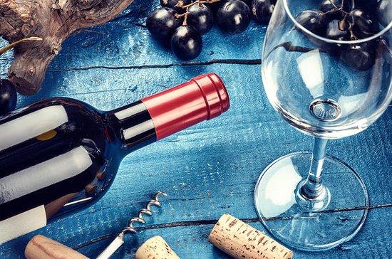 Vinsmaking, slovensk vinhistorie