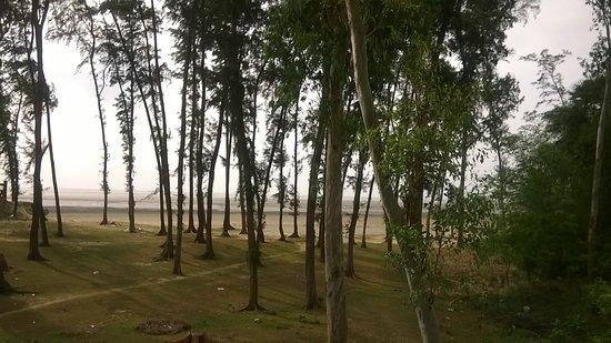 Tajpur, Ấn Độ: Beach view from resort