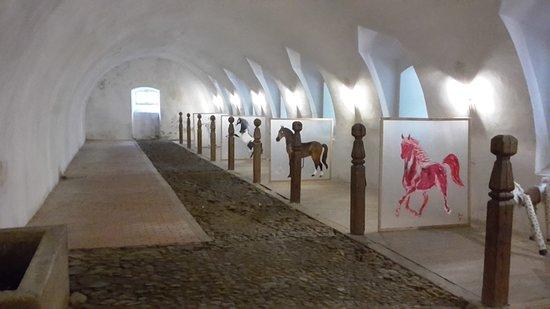 Jablonne v Podjestedi, Czech Republic: The old Stables