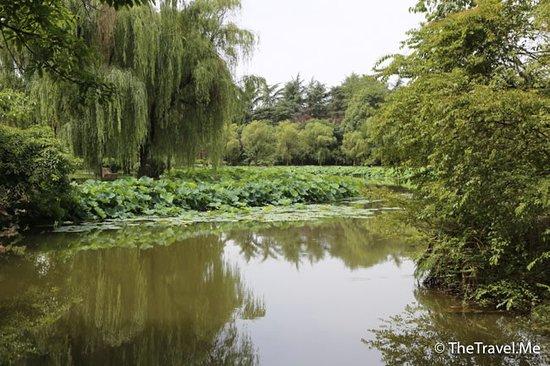Guanghan 사진